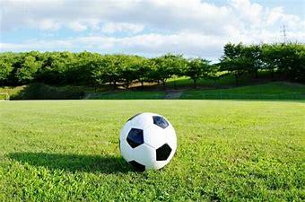 ロシアサッカーワールドカップ競技会場の芝の種類の違いについて